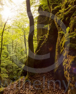 Schwäbische Alb – New Landscape Work