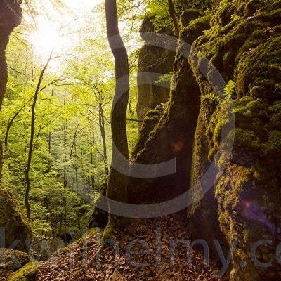 Schwäbische Alb: Hier gibt es Fotografien aus der Reihe Landschaftsfotografie auf der Schwaebischen Alb.