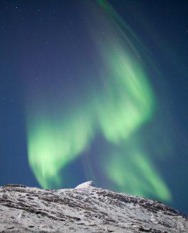 Arktis, Polarlicht, Vollmond