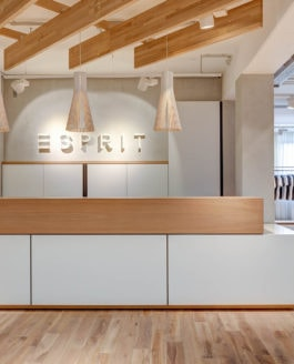 Retail Photography: Esprit Showrooms