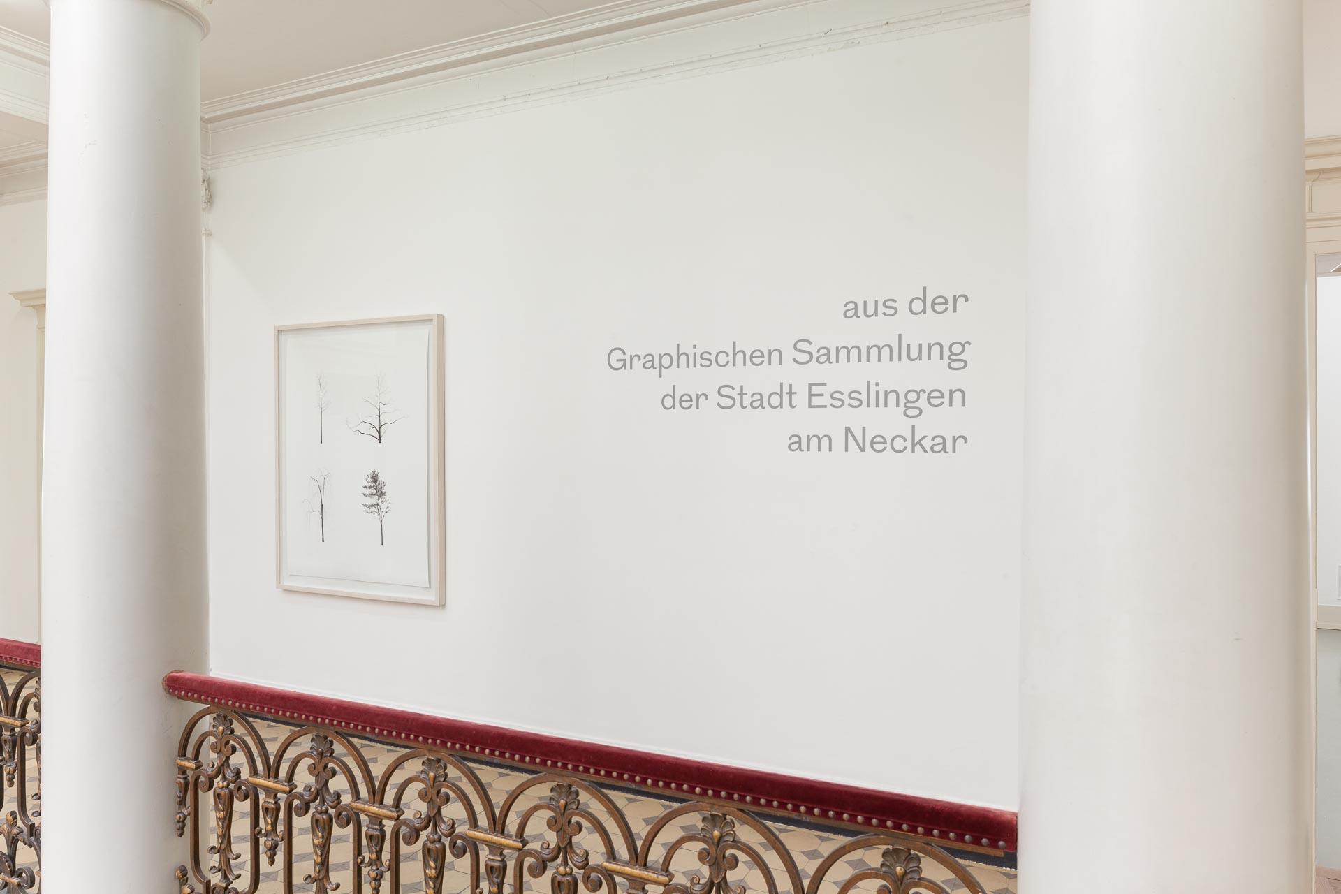 Museumsfotografie Villa Merkel, Graphische Sammlung